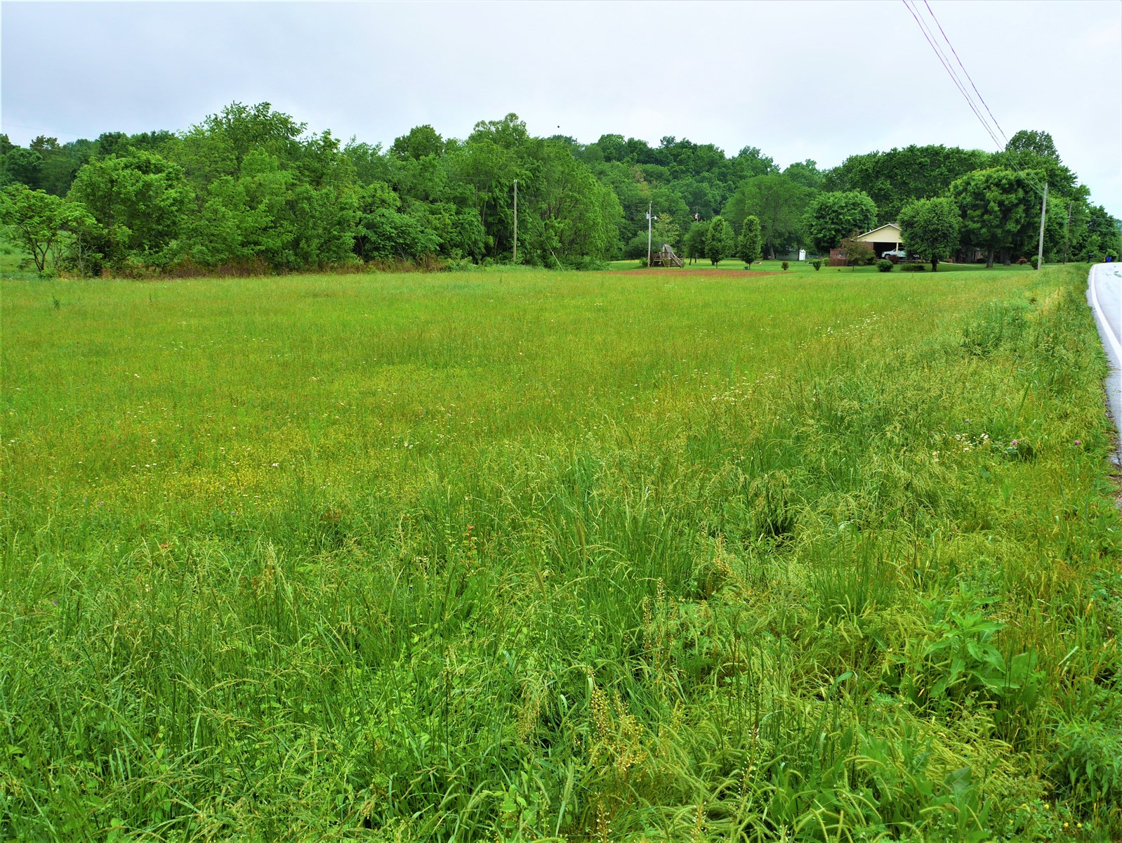 three beautiful, half-acre lots on Highway 90, Summer Shade