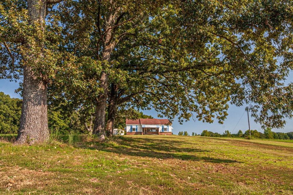 Beautiful Setting with Fixer Upper Home; near Michie, TN