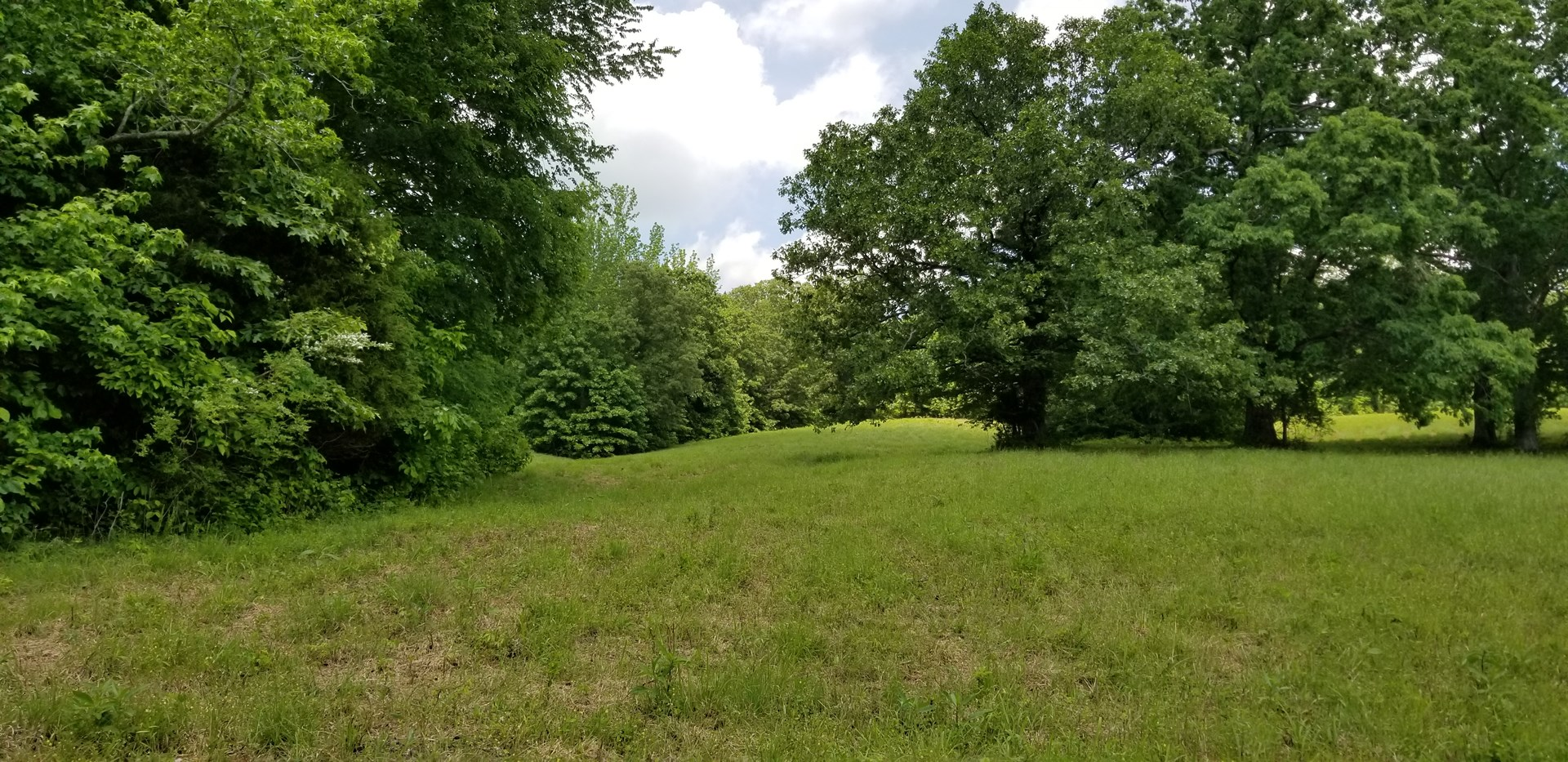 5.07 acres near town in Perry County TN with Owner Financing