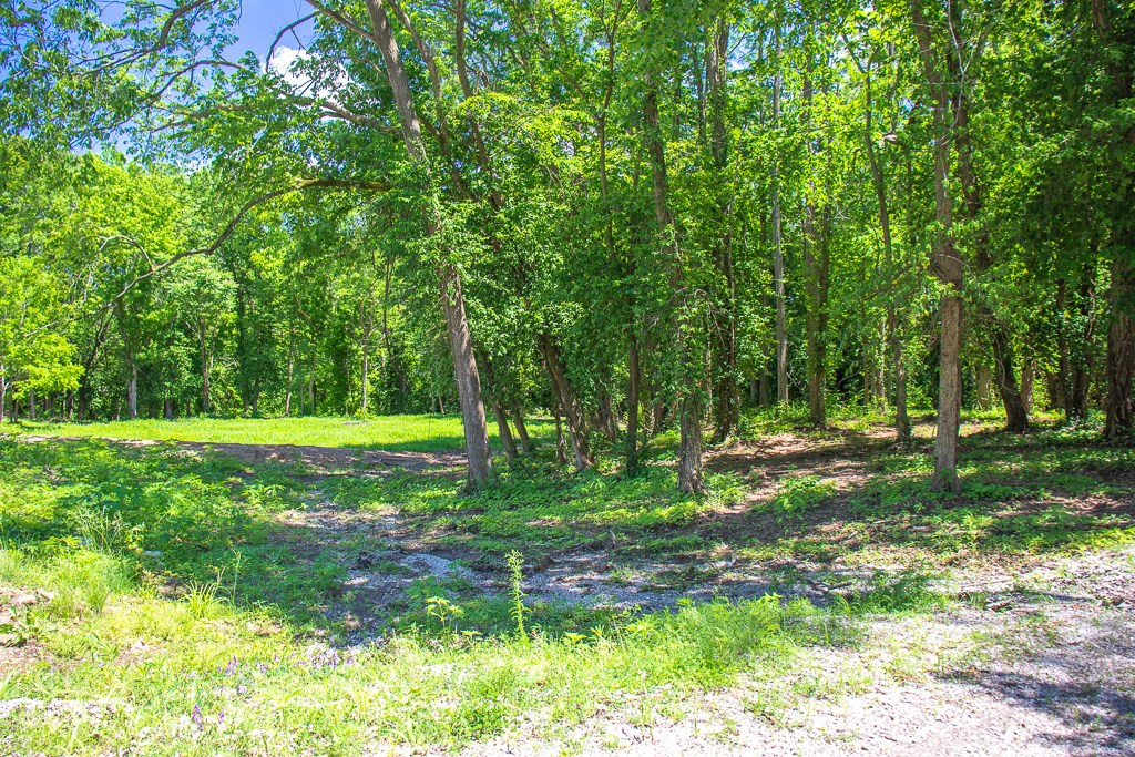 2 Lots, Buildable, Private Location in Carlinville