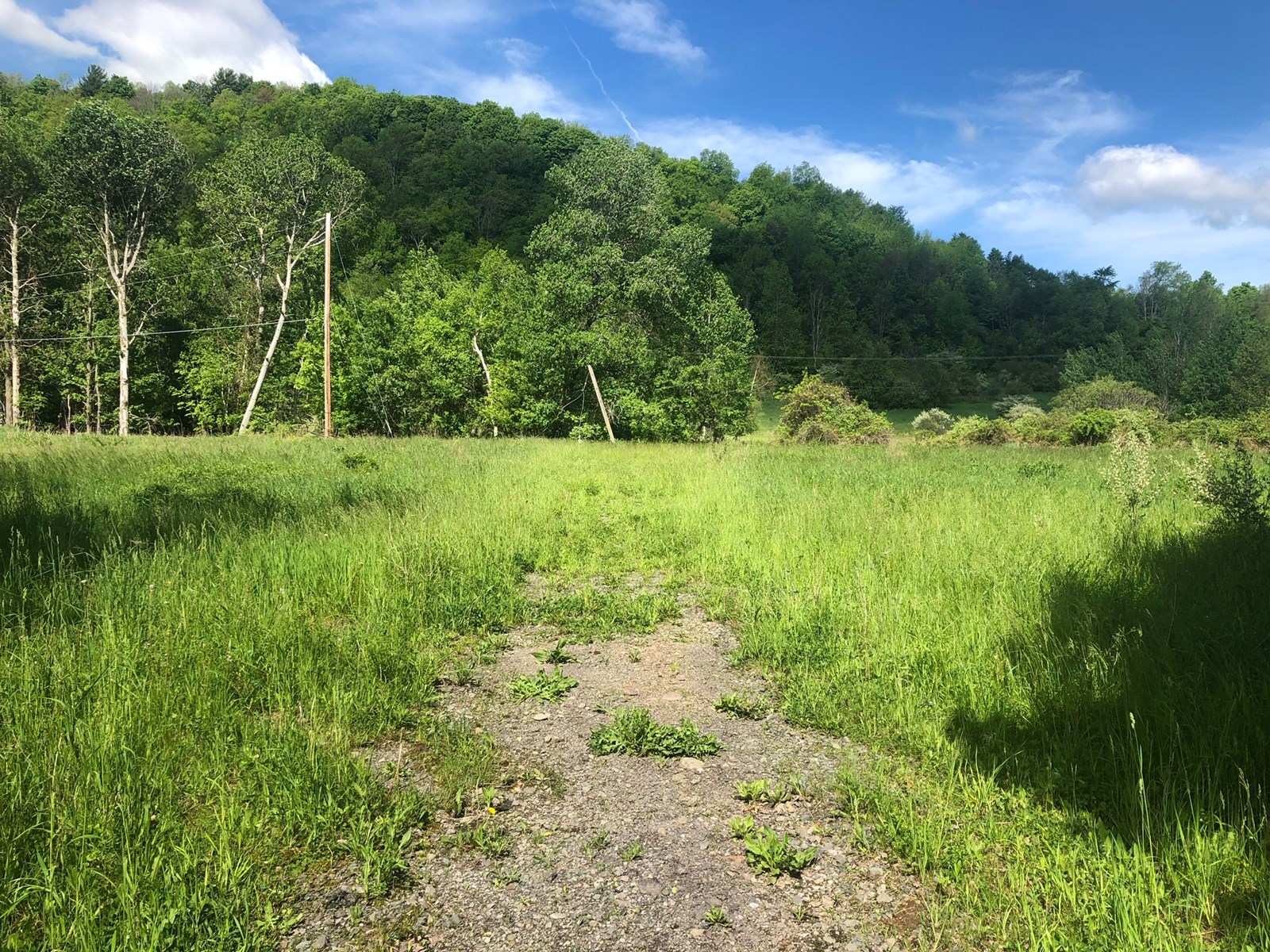 6+ Acres of Building Land For Sale Tioga County, PA
