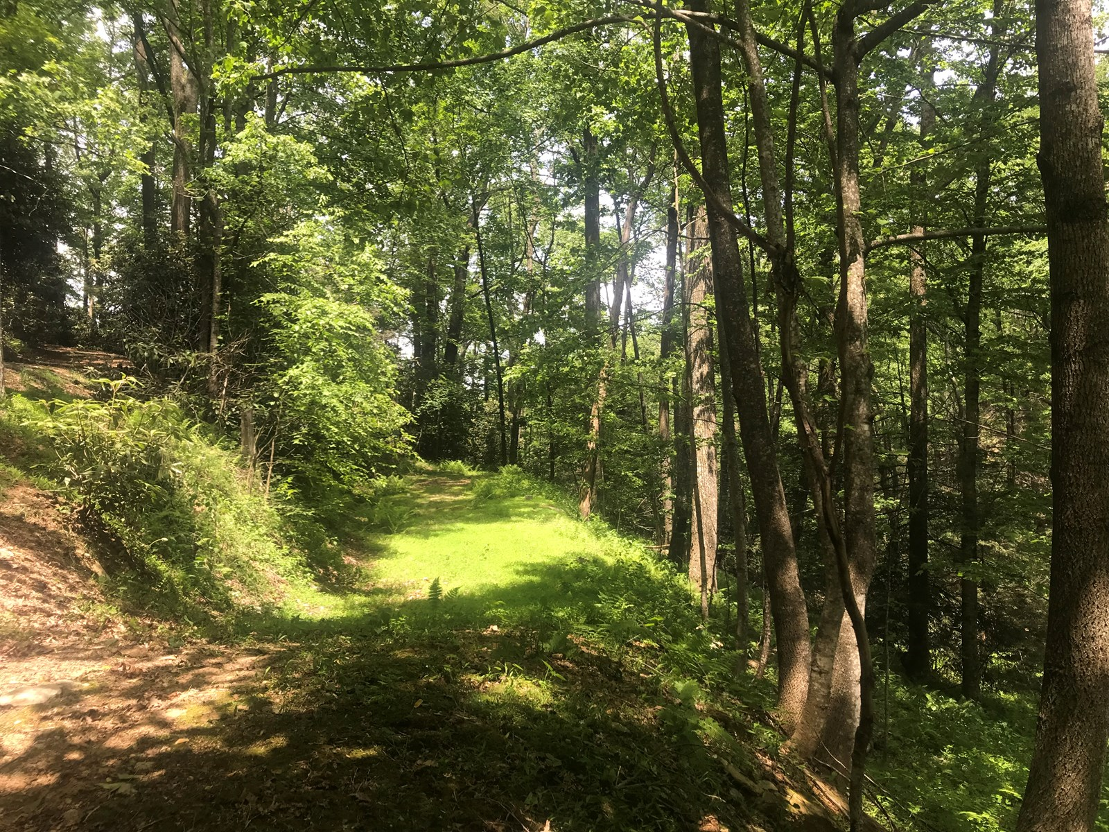 Building Lot for Sale near Blue Ridge Parkway