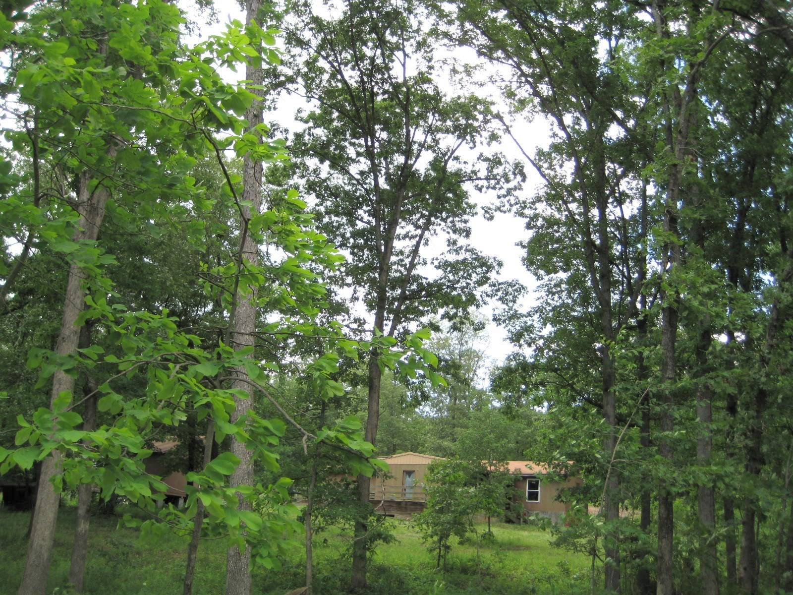 Missouri Land For Sale! 8.4+/- Acres! House, well, electric!