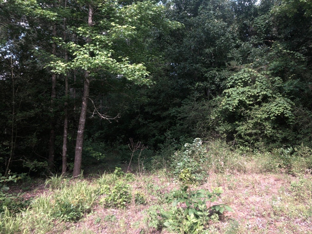 Land , Acreage For Sale In East Texas