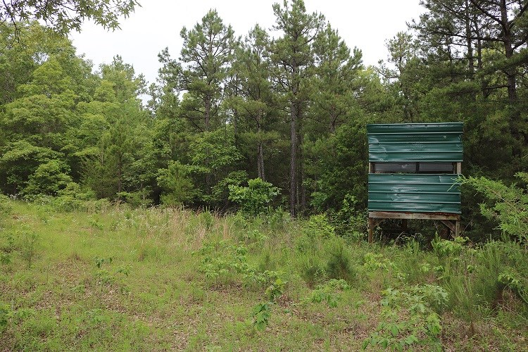 LAND FOR SALE IN OXFORD, ARKANSAS