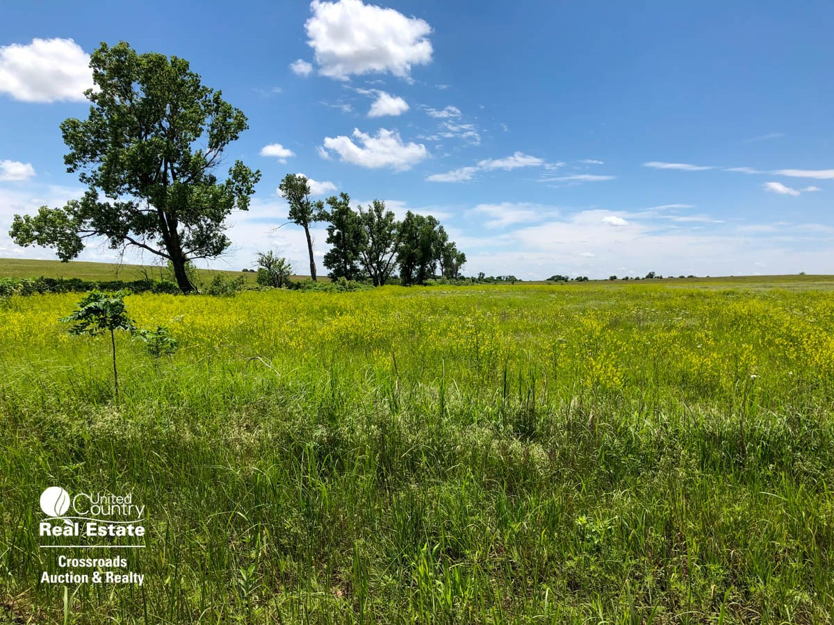 79.18± Acres of Farmland, CRP & Pasture in Saline County, KS