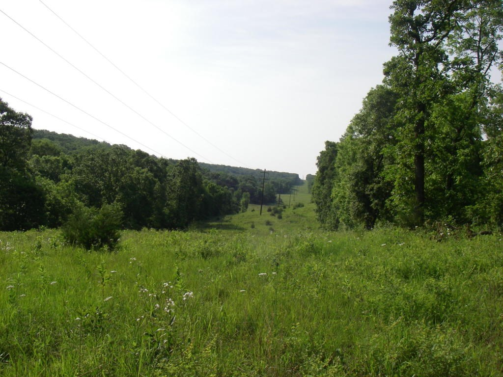 Small Acreage For Sale In Southwest Mo.
