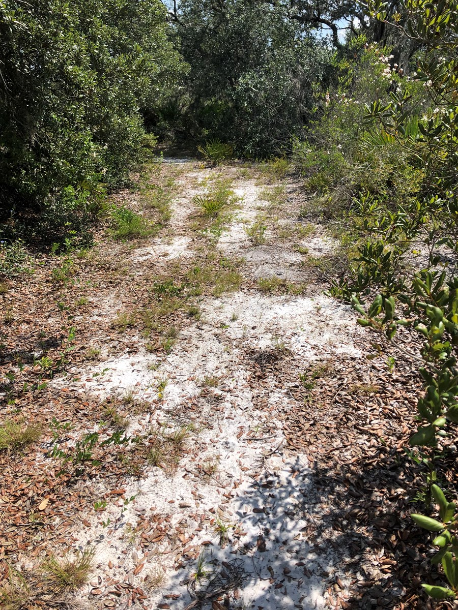 1.16 ACRES IN LAKE WALES ESTATES, VACANT LAND CENTRAL FL