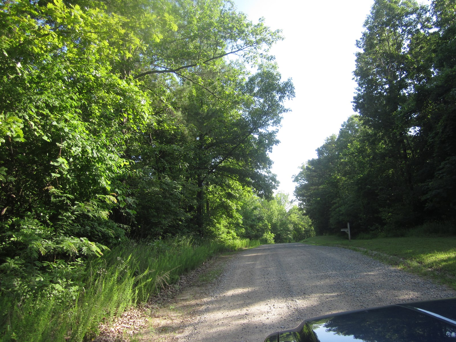 ACREAGE FOR SALE NEAR MOUNTAIN HOME, ARKANSAS!