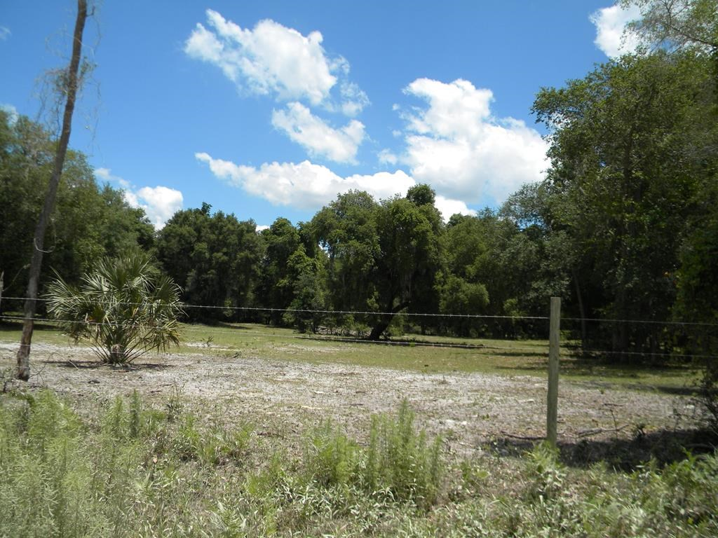 NORTH CENTRAL CHIEFLAND FLORIDA 10 ACRES ACROSS GOLF COURSE