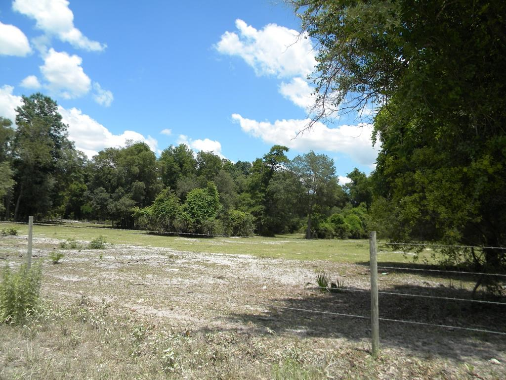 NORTH CENTRAL CHIEFLAND FLORIDA 9.97 ACRES NEAR GOLF COURSE