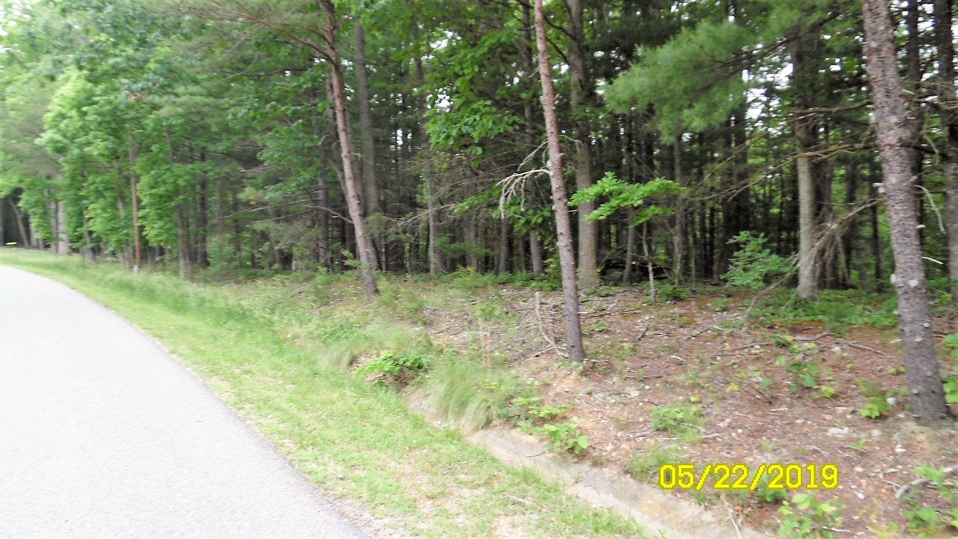 Building Lot in Max Meadows, VA