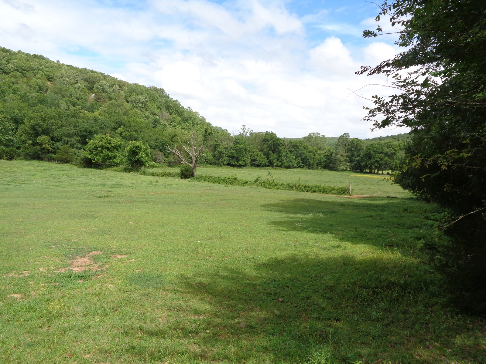 Witter, Arkansas-Madison County 180 acre property For Sale