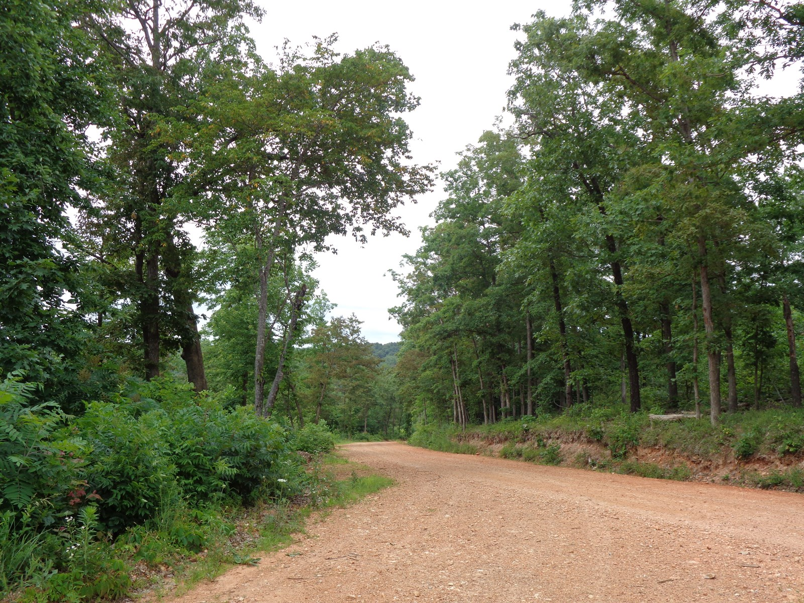 Northwest Arkansas-40 Acres For Sale-Huntsville, AR
