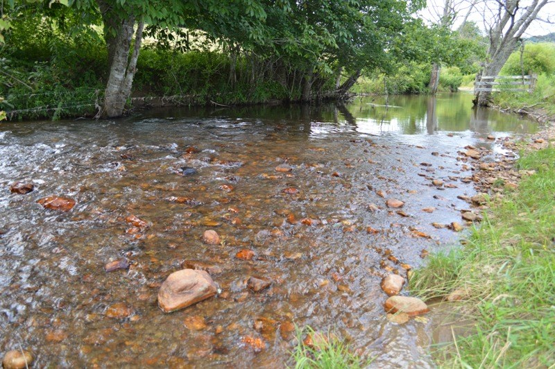 14.95 Acres +/- with Little River Frontage for Sale