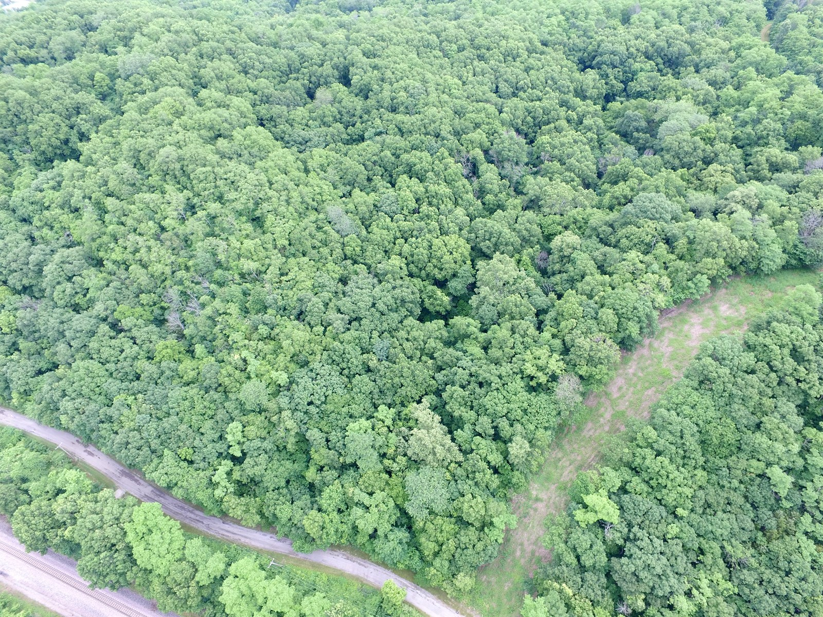 Absolute Auction - 48 Acres in Weston Bluffs - Platte County MO
