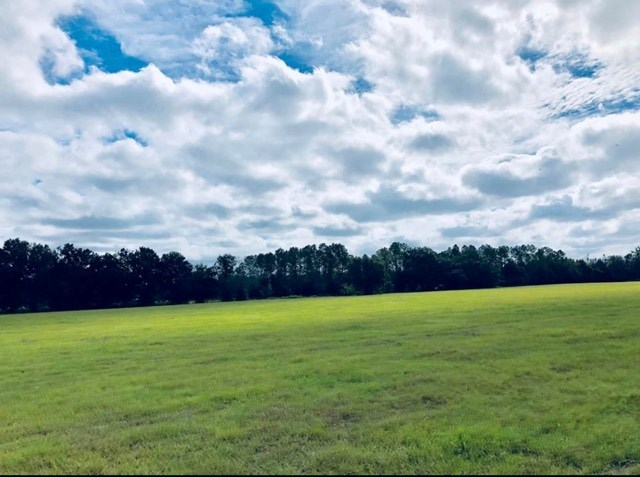 60 ACRES FOR SALE - TRENTON FLORIDA GILCHRIST COUNTY