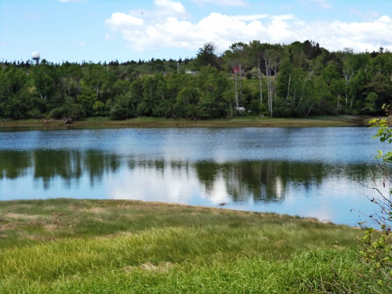 Buck's Harbor Land Lot For Sale in Machiasport Maine