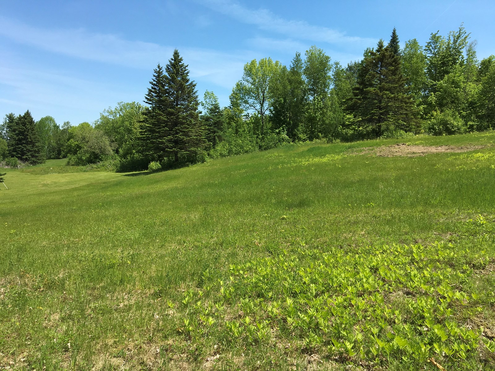 Country land for sale on Call Road in Exeter, Maine