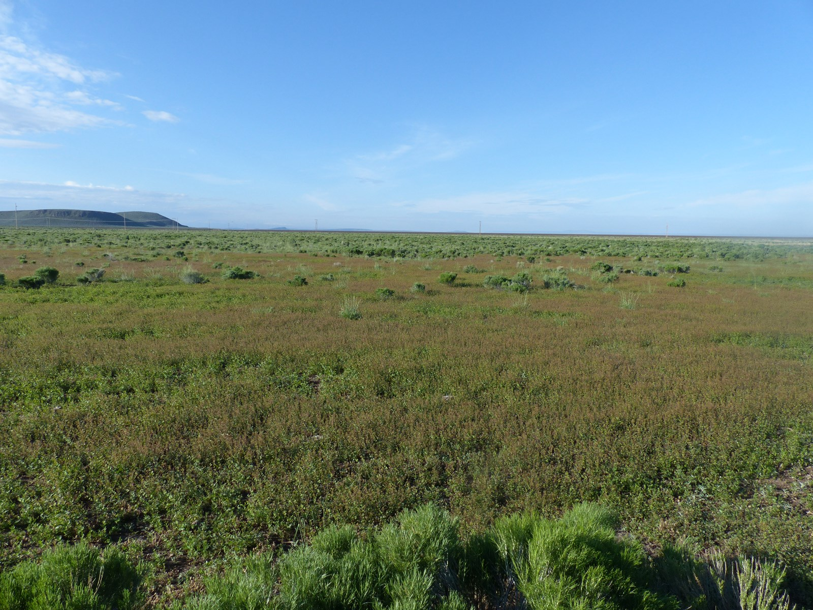 EASTERN OREGON PASTURE SETUP FOR SALE EAST OF BURNS