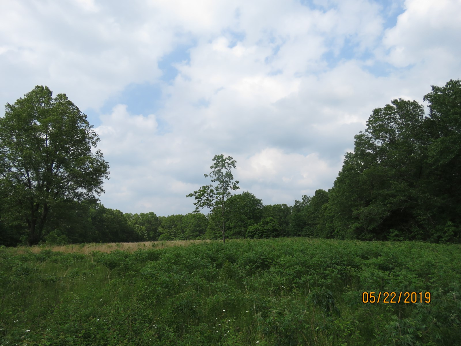 Land for sale in Douglas county