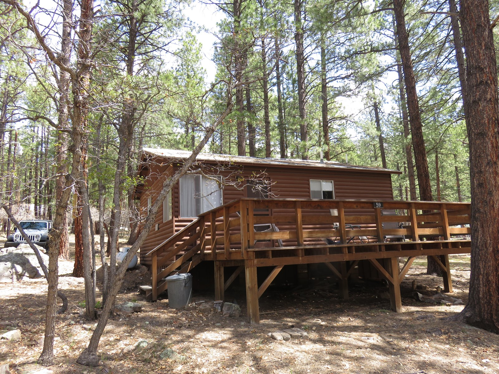 Chama New Mex Brazos Cabin for Sale Northern NM Real Estate