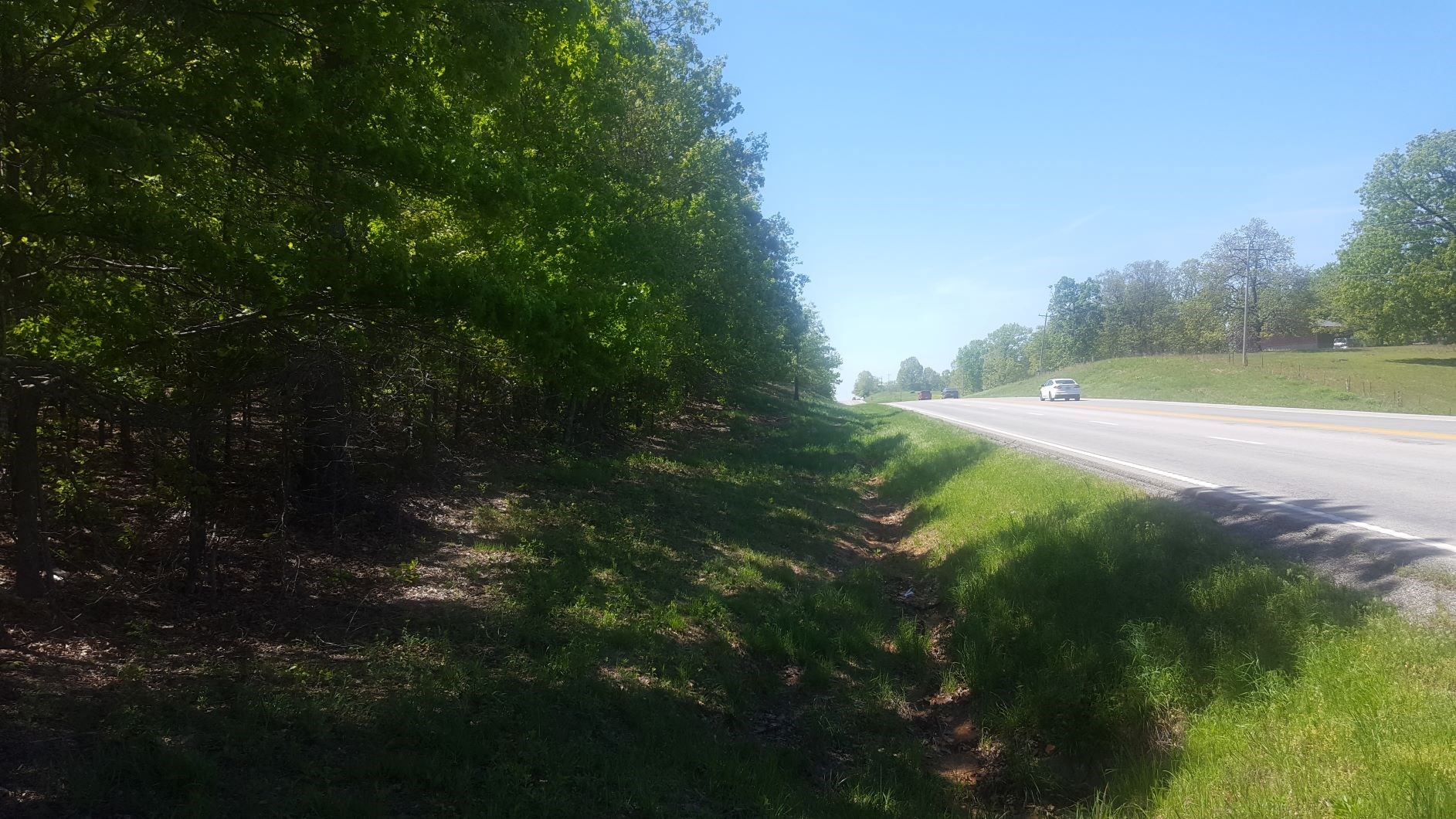Land for Sale in Howell County, Missouri - Hunting - Build!