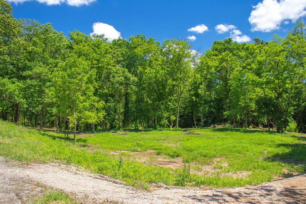2 Lots, Buildable, Cleared, Private Location in Carlinville