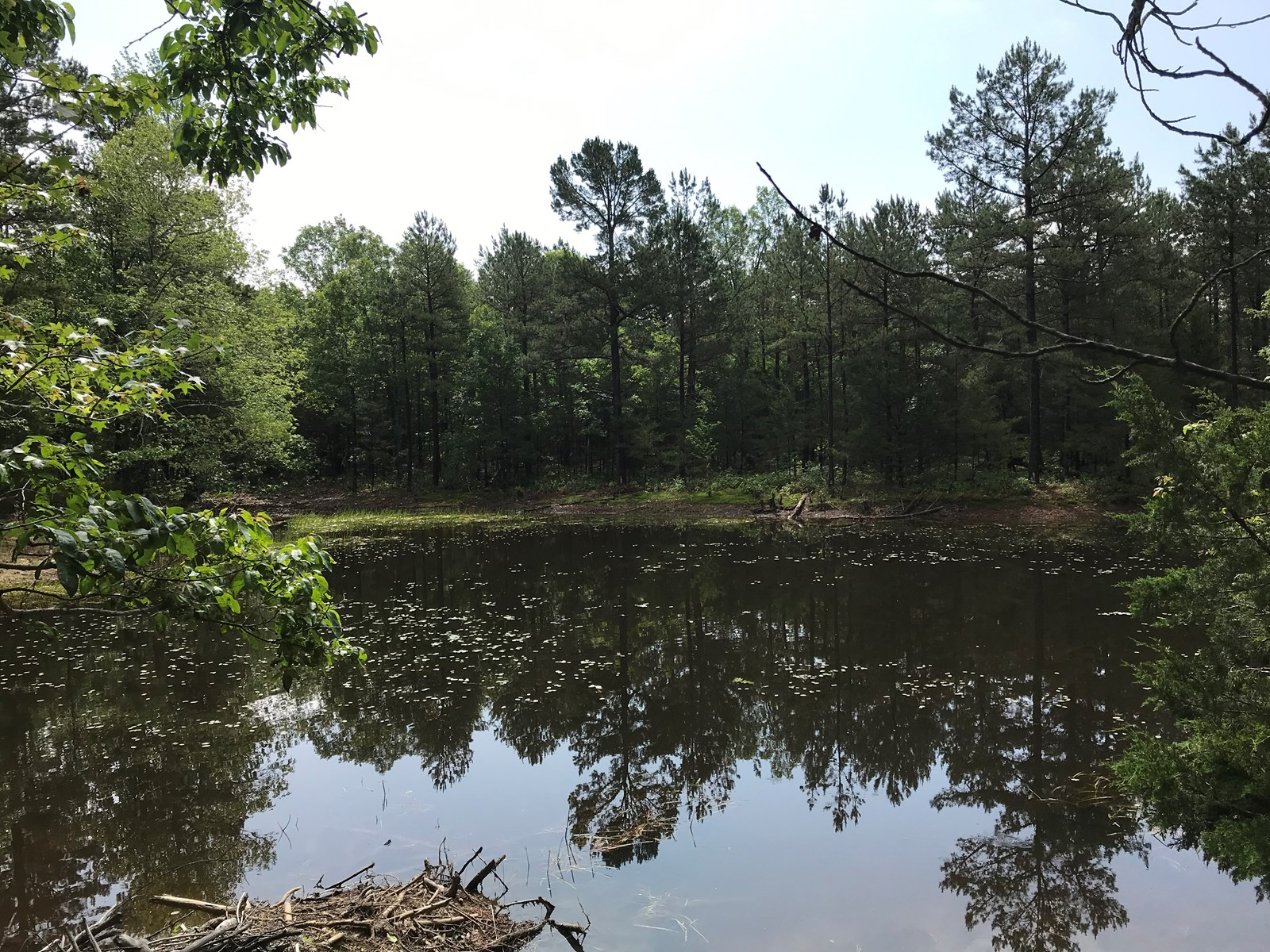 Arkansas Ozarks Hunting/Recreational Land For Sale