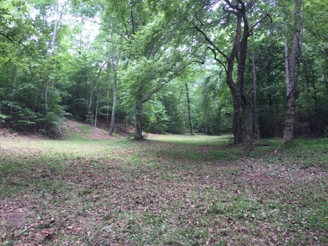 SOLD! WAYNE COUNTY WAYNESBORO TN LAND 2 WELLS HOME SITE