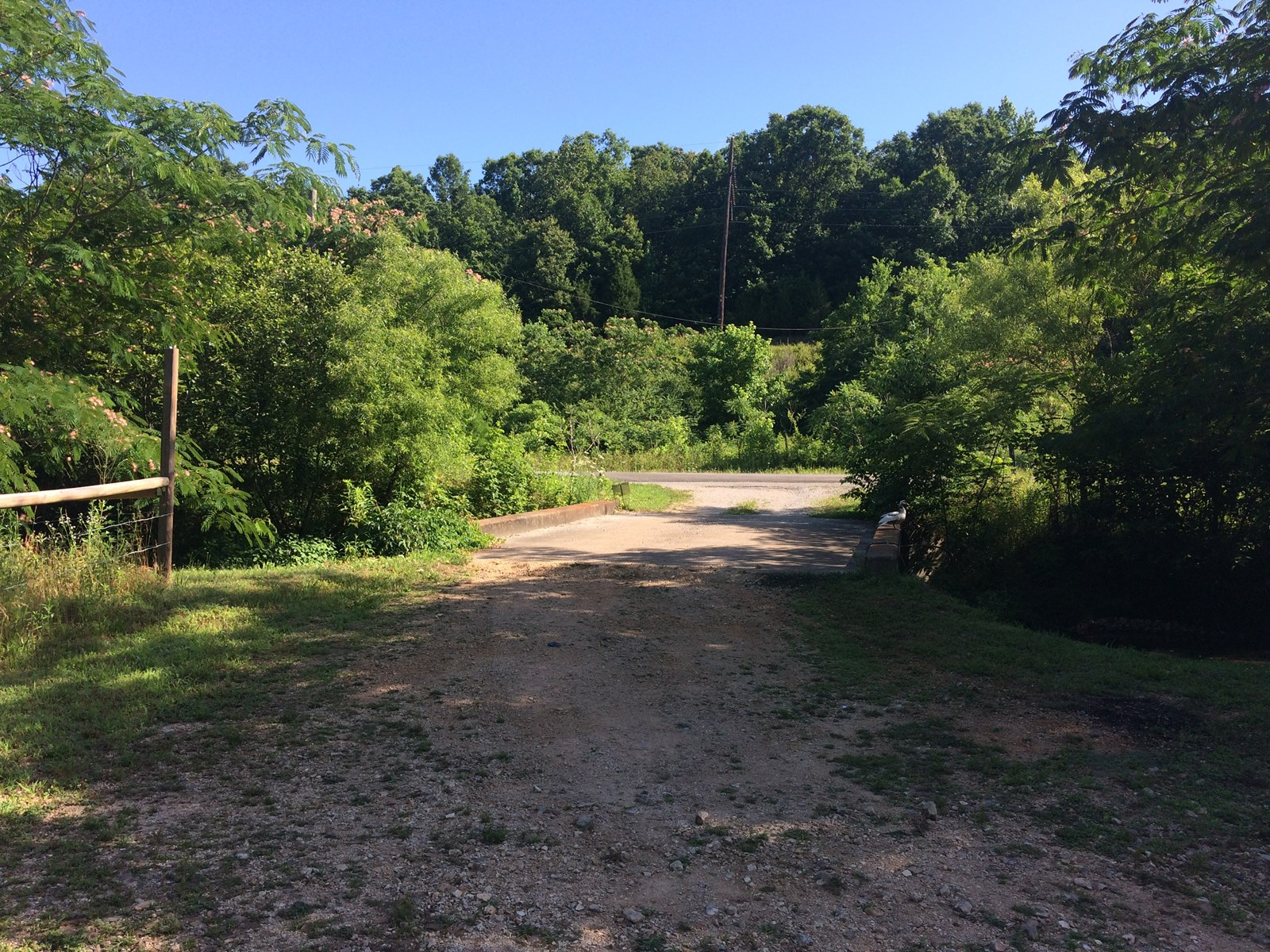 1+/- acre off of Hwy 50 East