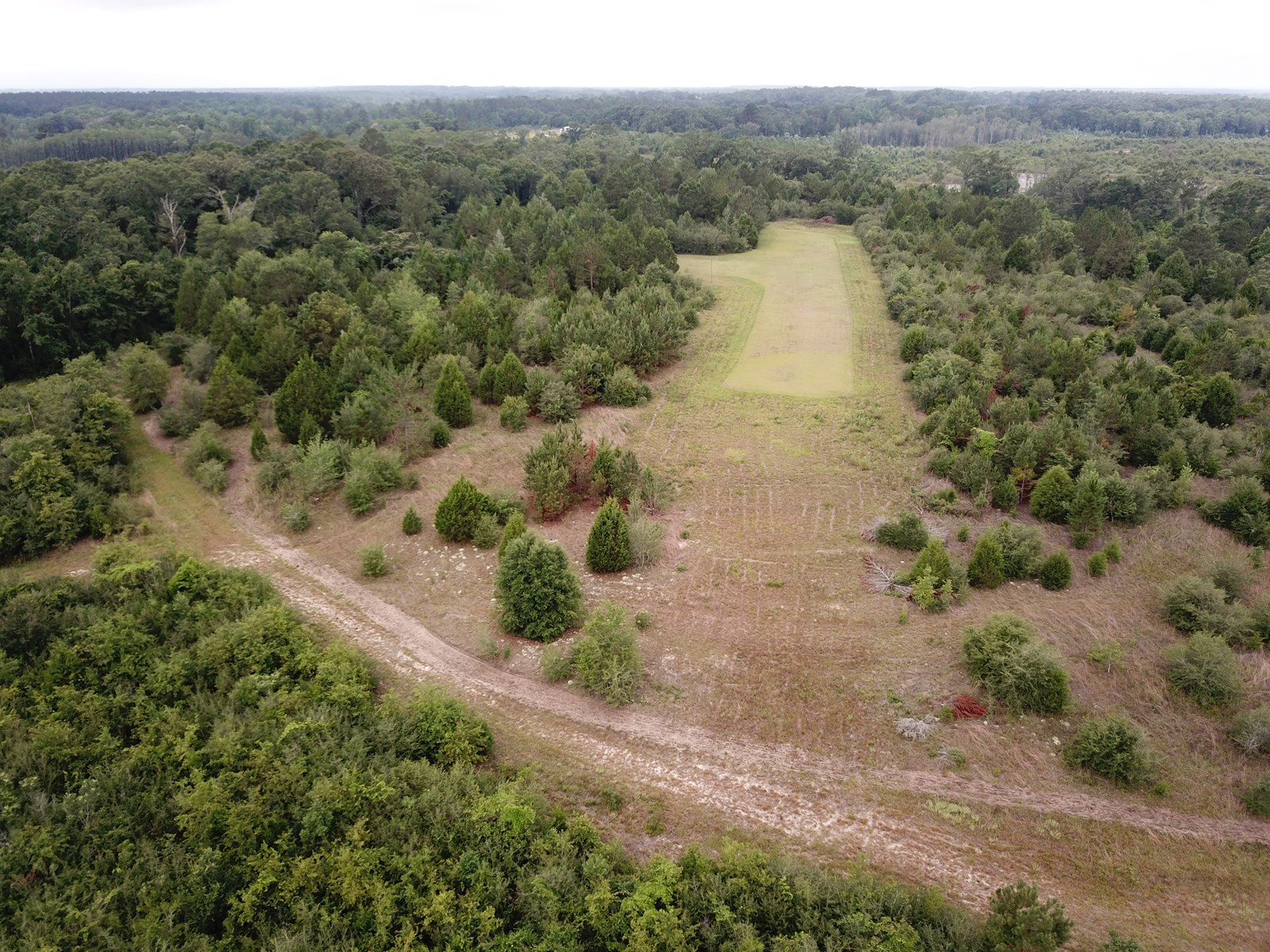 663 Acres Holmes County Florida Deer Hunting Land for sale