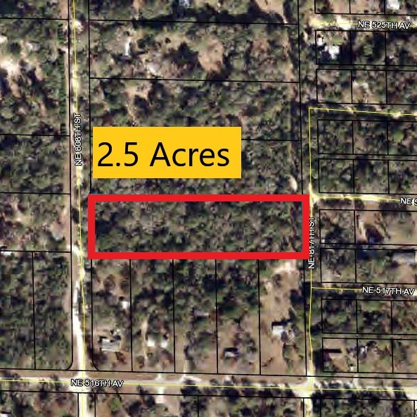 VACANT LOT - 2.5 Ac. Old Town, Dixie County, Florida
