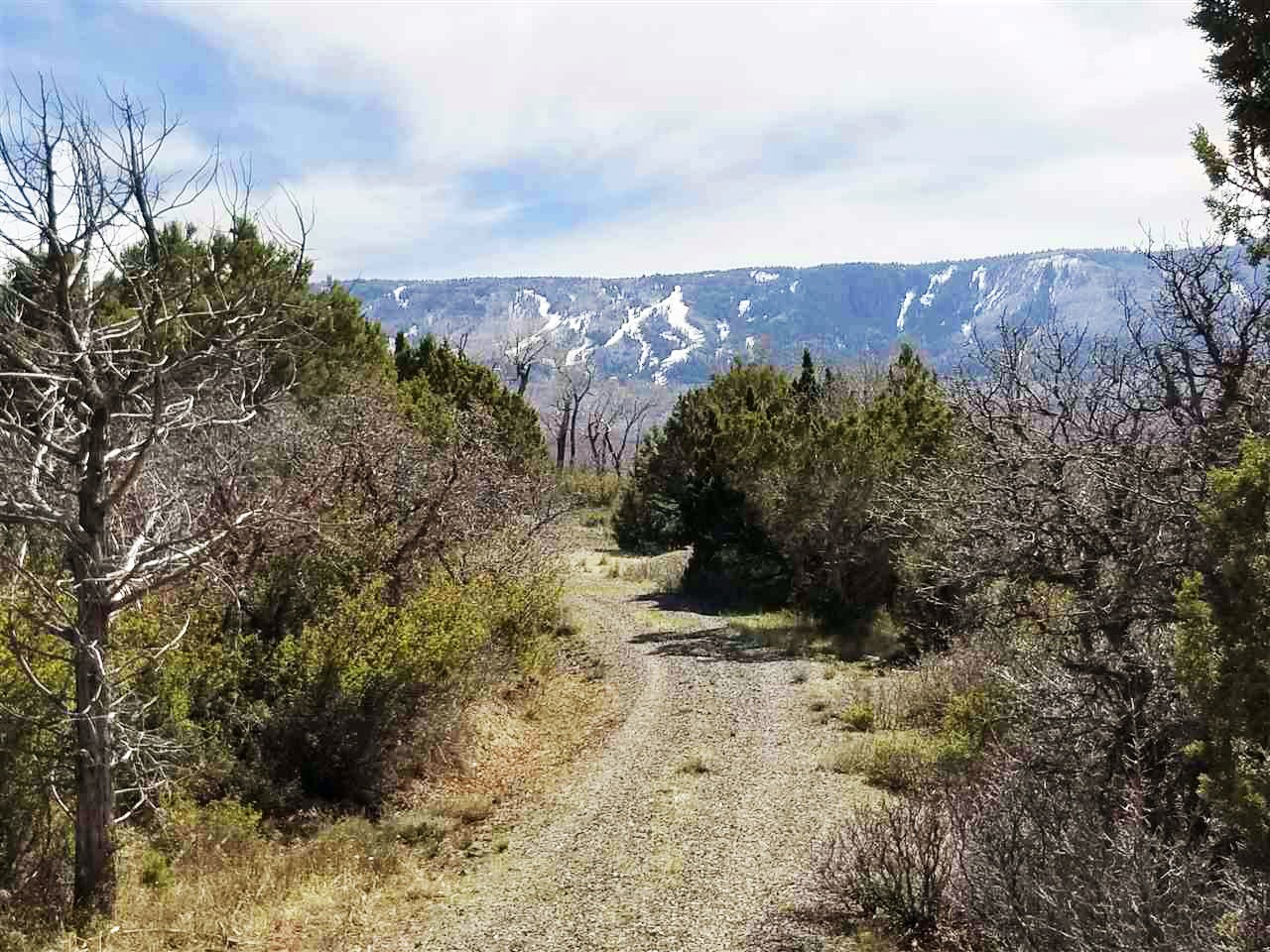Colorado Mountain Development Land for Sale