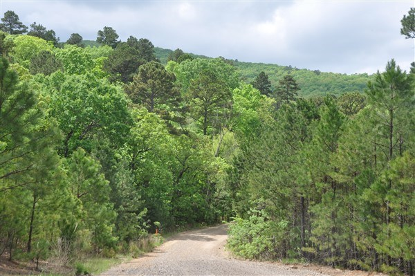 SCENIC OKLAHOMA HUNTING LAND & BUILDING SITE FOR SALE