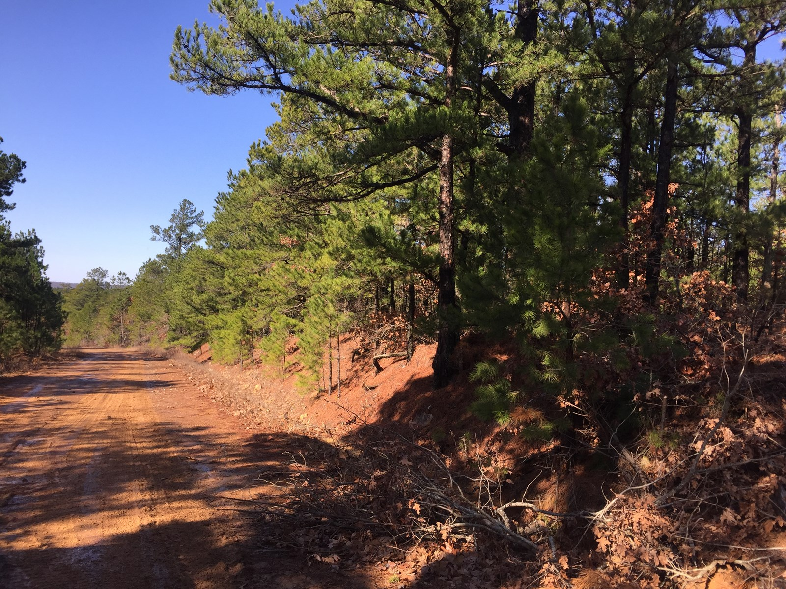 Land for Sale in Clayton,OK- Mountain Retreat Hunting Land