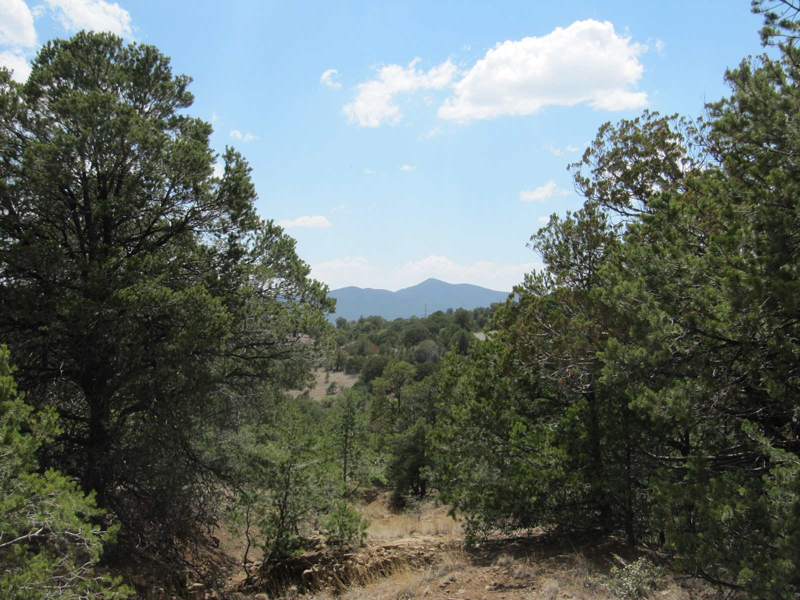 10 BEAUTIFUL MOUNTAIN ACRES NORTH OF SILVER CITY