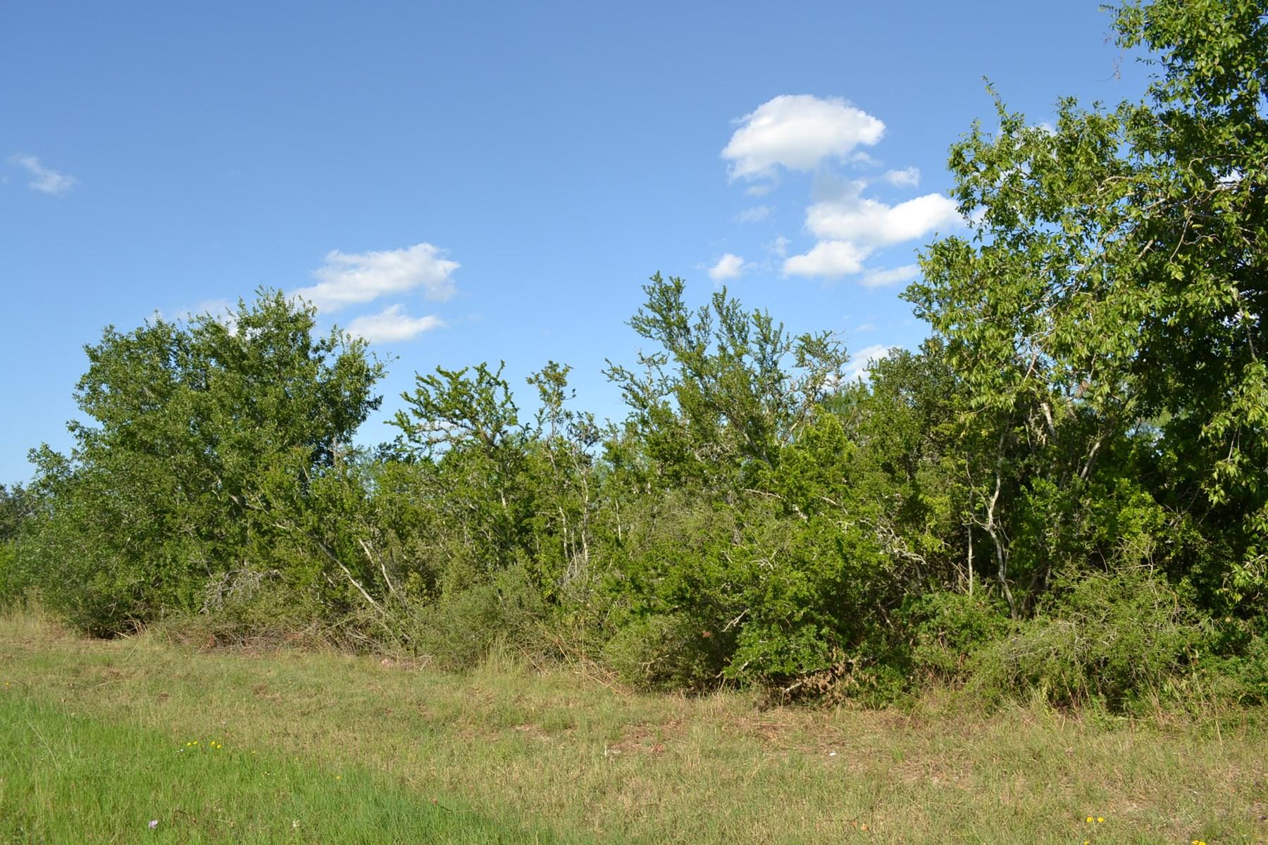 17.8 ACRES OF UNRESTRICTED PROPERTY - SOUTH OF SAN ANTONIO