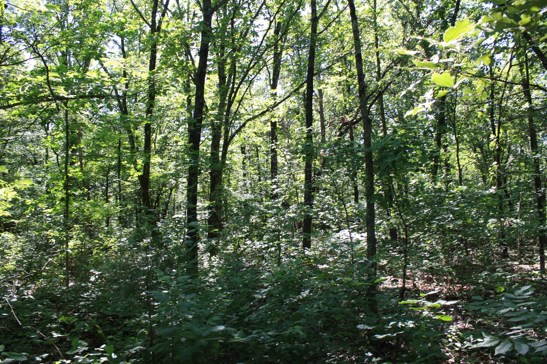 Greenville Missouri 1 acre for sale