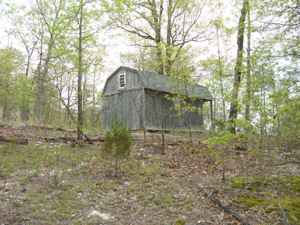 8 mostly wooded acres with a small 1 room cabin