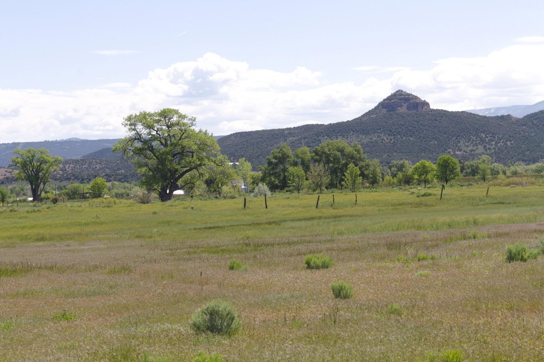 Colorado Mountain Development Land for Sale