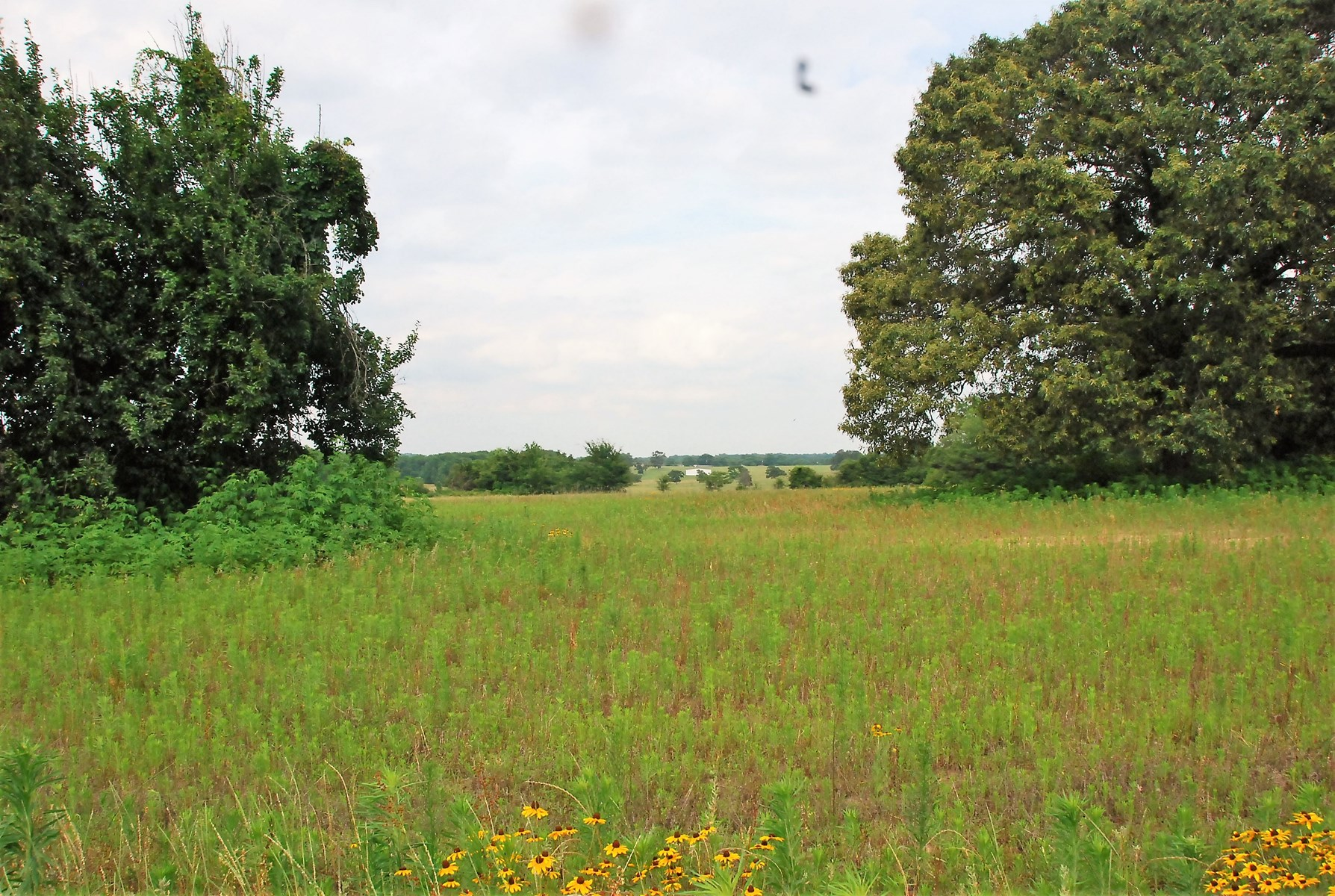 Lindale Texas Land Smith County Development Opportunity