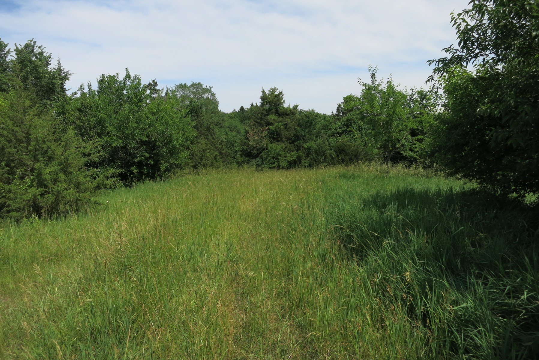 Hunting Ground For Sale in NW Missouri