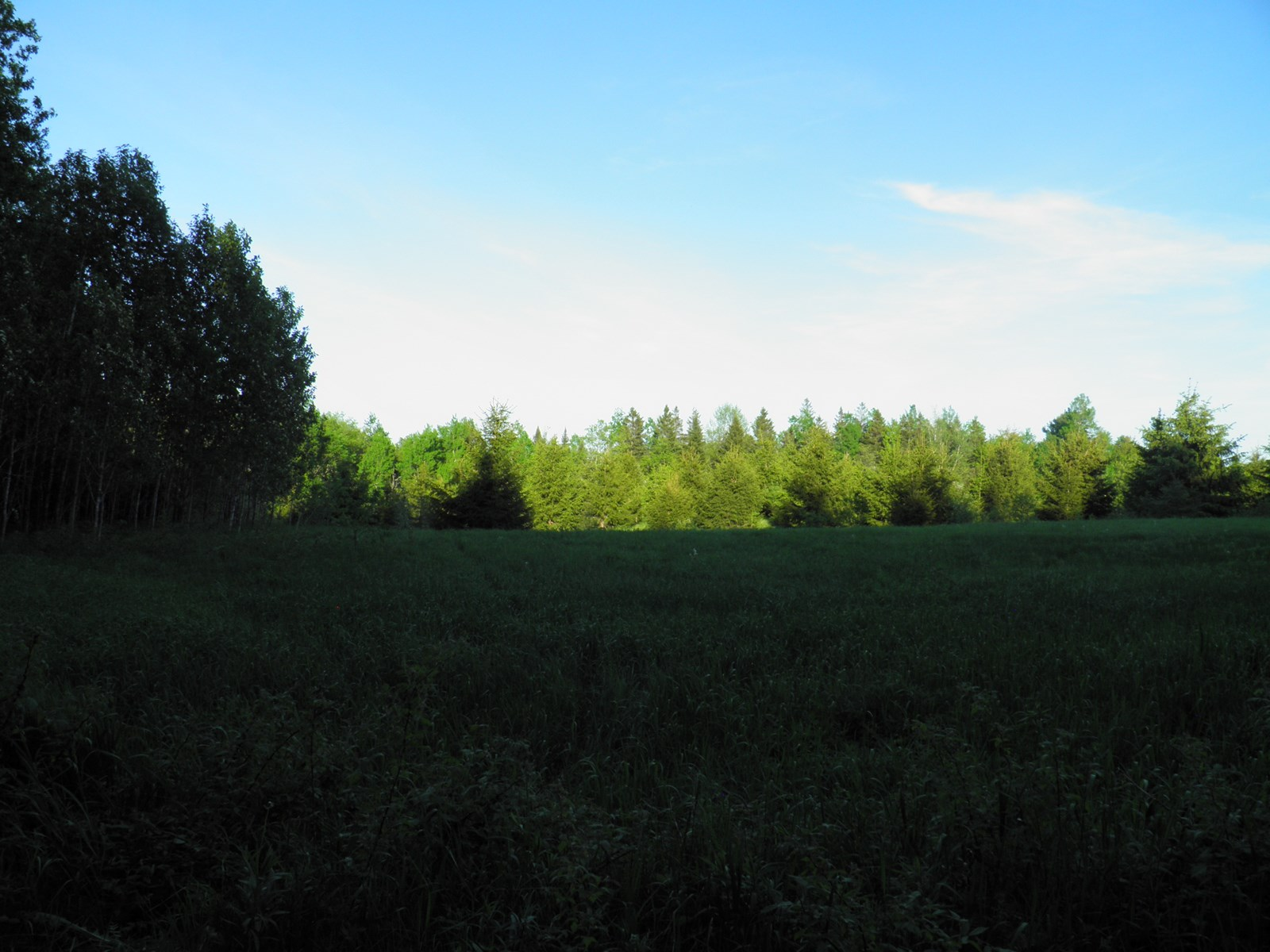Farm Property For Sale in Maine