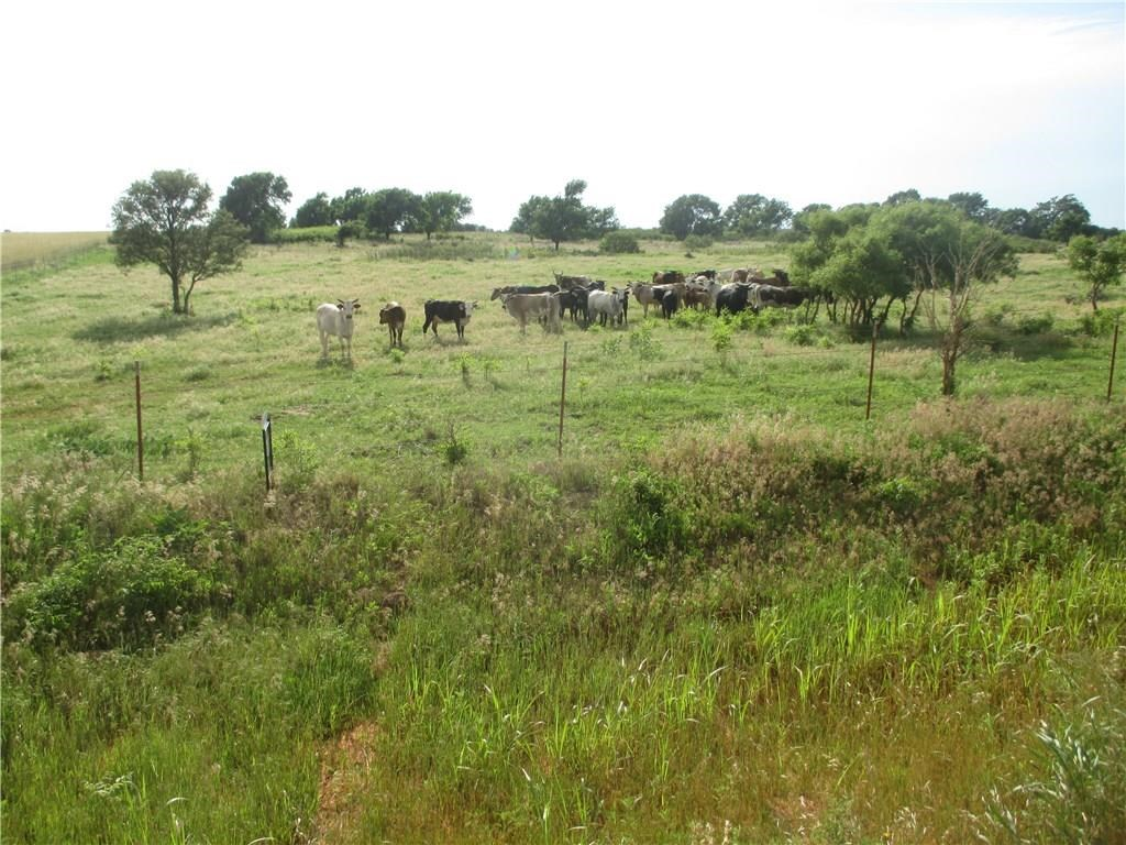 160 ACRES FOR SALE IN WESTERN OKLAHOMA