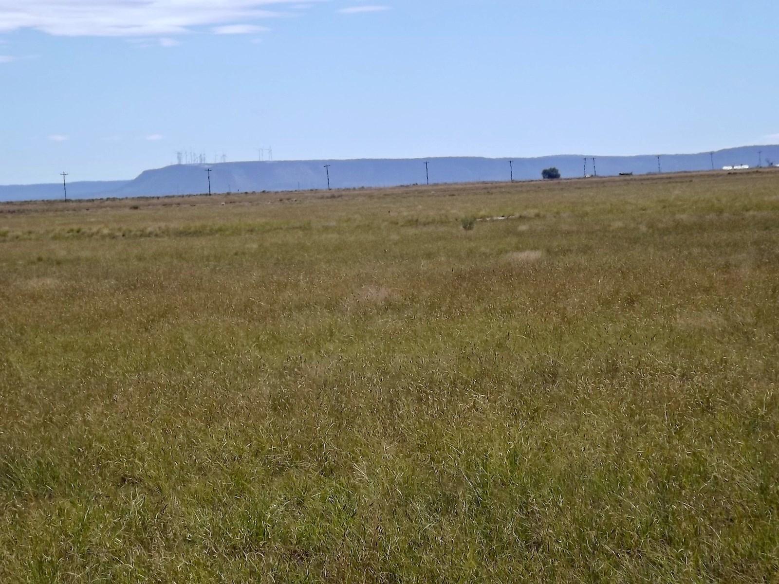 NM 904 Ac Grassland For Sale Estancia New Mexico
