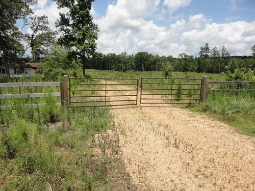 Timberland For Sale McCall Creek Franklin County MS