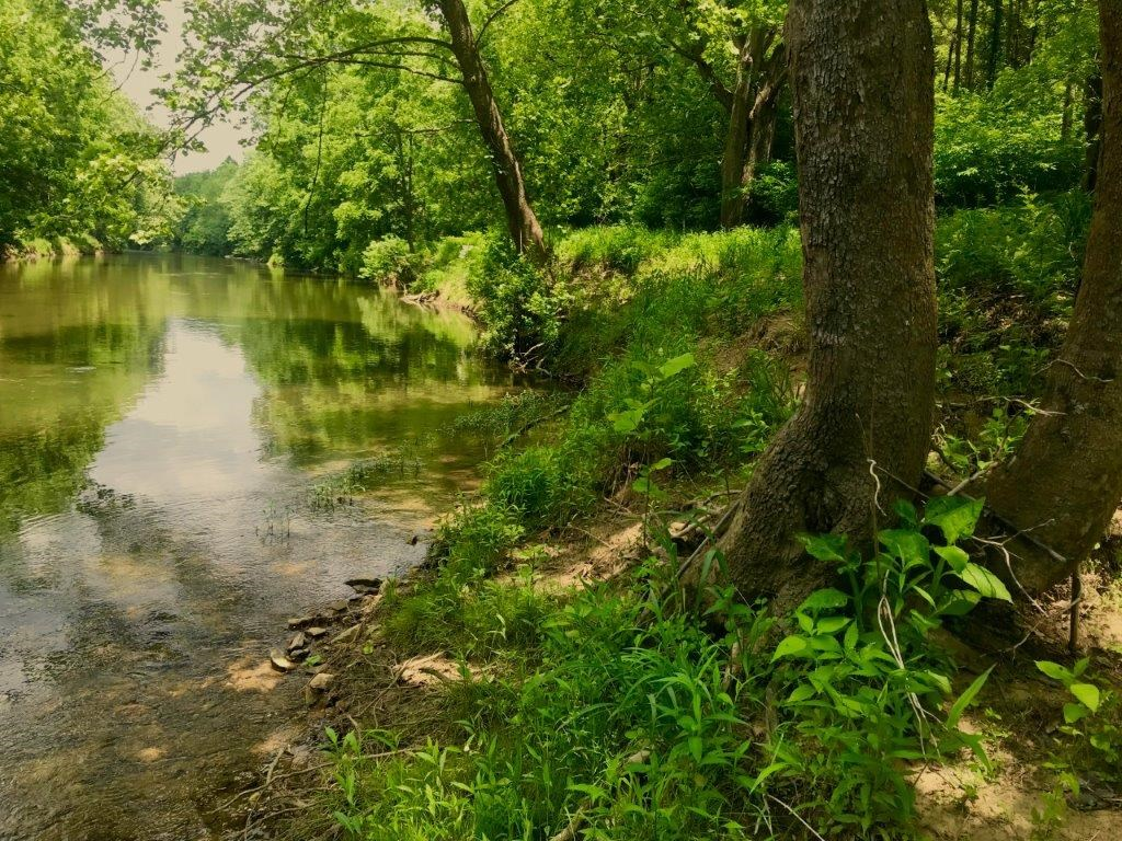 Perfect Little River Frontage Land for Sale in Riner VA