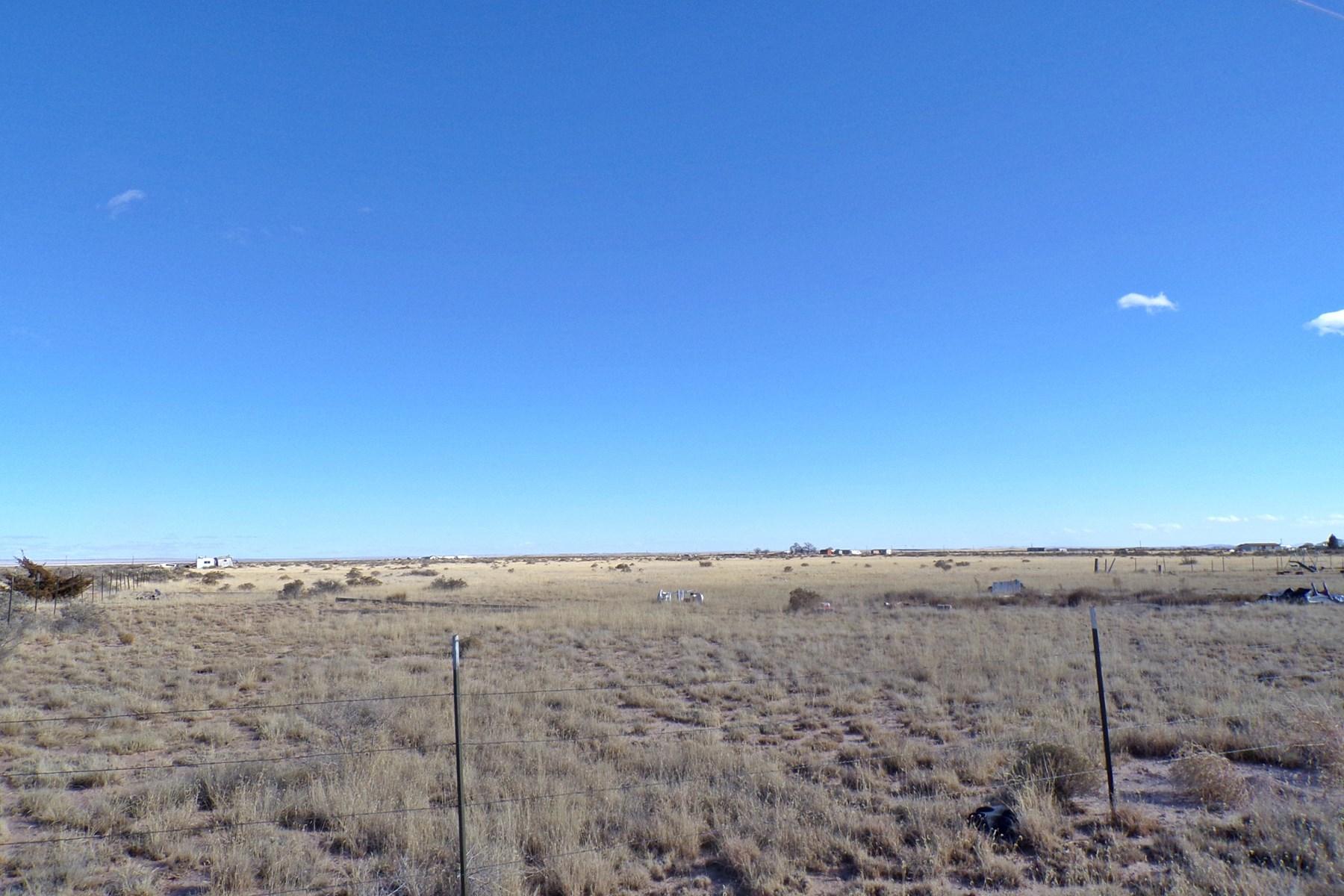 New Mexico 67 Ac Grazing Land For Sale near Estancia