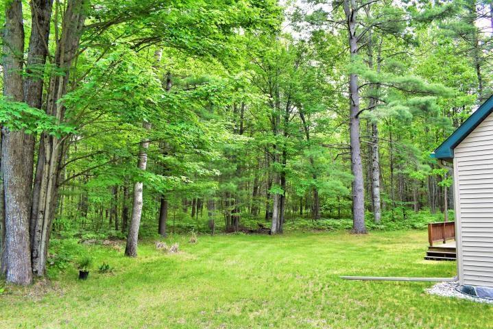 Yard/Trees
